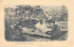 Making a Canoe, Freetown, Sierra Leone