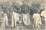 Children carrying wood, Sierra Leone