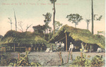 Officers of the W. A. F. Forces in Grass Huts, Sierra Leone