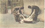 Grating Cassava for making foofoo, Sierra Leone