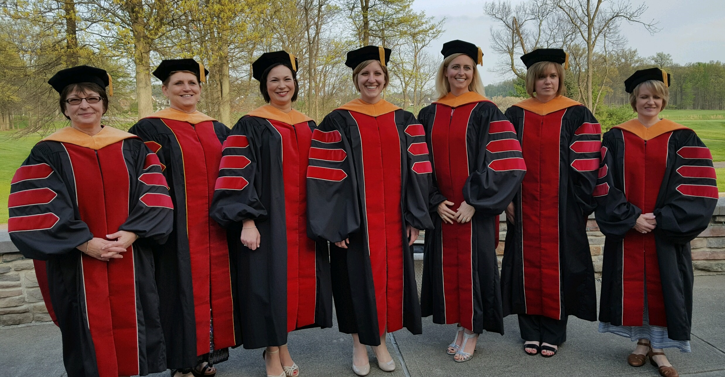 faculty perceptions of the doctoral dissertation The research was designed to measure the perceptions of graduate faculty members at a selected university toward doctoral qualifying examinations subjects consisted.