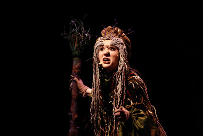Into the Woods Image 22